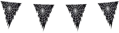 Vlaggenlijn Spinnenweb (10m)