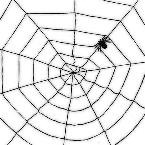 Decoratie Zwarte Spinnenweb (1,5m)