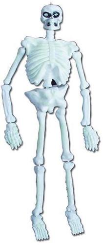 Skelet GID 3D (1,52m)