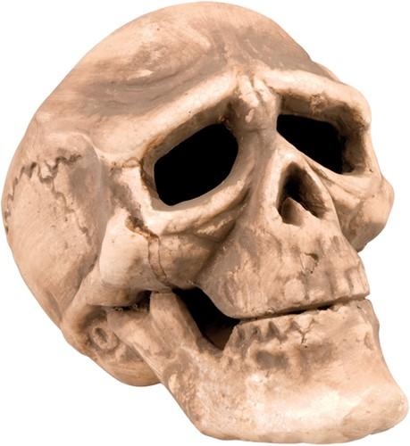 Doodshoofd Decoratie Skull 22x15cm