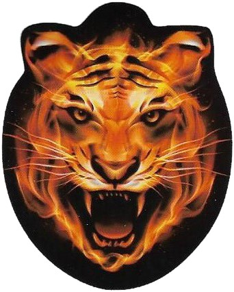 Leeuw Morph Masker