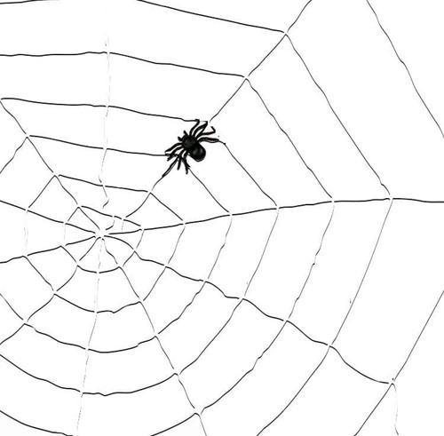 Decoratie Witte Spinnenweb (1,5m)