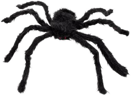 Zwart Harige Spin (70cm)