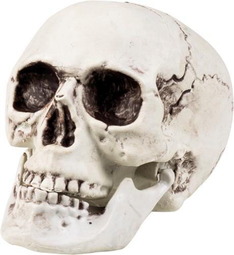 Decoratie Skull (beweegbare kaak)
