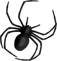 Zwarte Spin Weduwe (18x15cm)