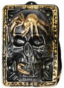 Wanddeco Zilveren Skull (35x24cm)