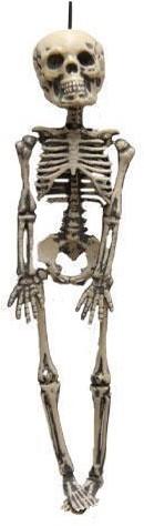 Decoratie Skeletje (30cm)