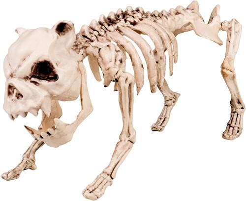 Skelet Hond Halloween Decoratie (42 cm lang)