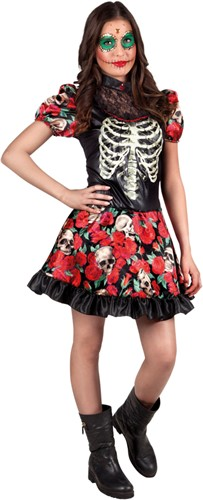 Niña Catrina Halloween Jurk (Dia de los Muertos)
