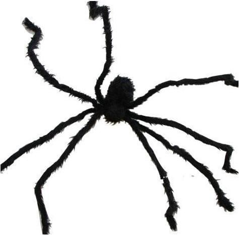 Zwarte Decoratie Spin (200cm)