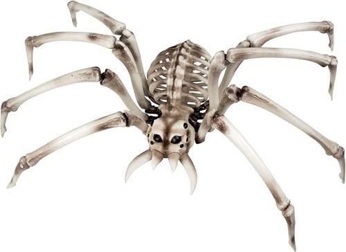 Grote Spinnenskelet Halloweendeco (48x82cm)