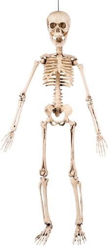 Hangdeco Beweegbare Skelet (50cm)